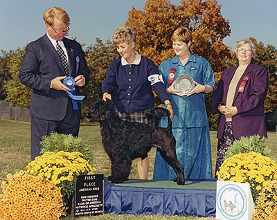 First place American Bred class, 2000 PWDCA National Specialty